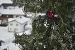 645156-spectateur-bien-place-competition-ski.jpg