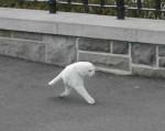google-street-view-chat-300x238.jpg